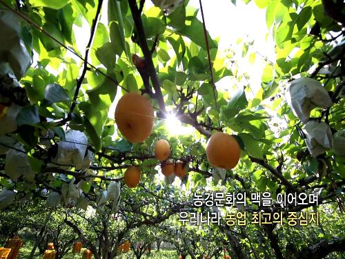 2016년 김제 지평선축제 홍보 동영상